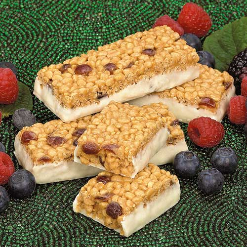 Double Berry Bars | Meal Replacement Bar | Fit Well, MD
