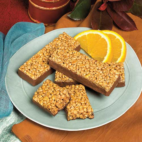 Fudge Graham Bars | Meal Replacement Bar | Fit Well, MD